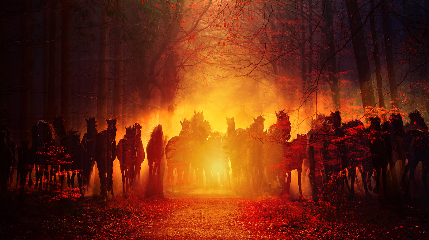 Group of Horses Running HD Photo Montage 02