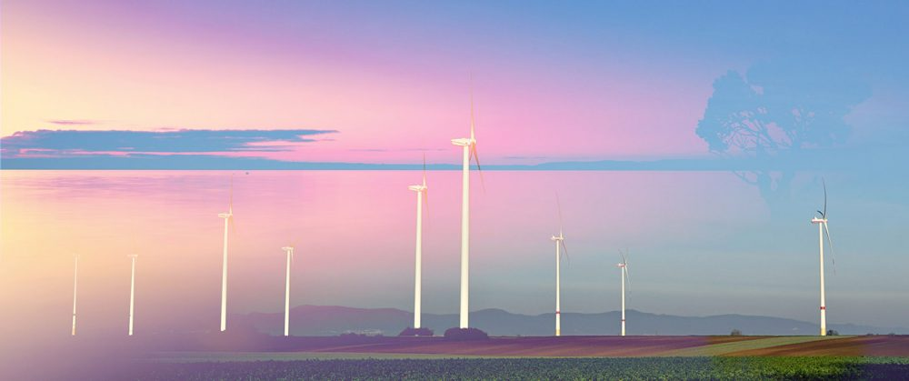 Windmills at Sunset 02 - Stock Photo